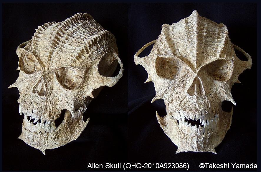 Resultado de imagen de El extraño cráneo extraterrestre que fue hallado en África.