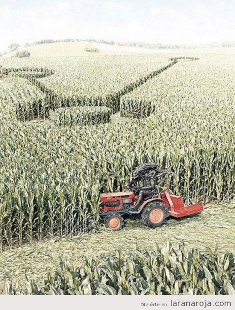 señales-extraterrestres-campos-trigo