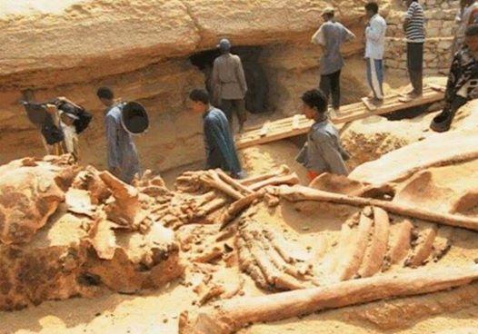 Revelaciones de los misterios de la tierra antes del juicio final Baa29-_gigantes2ben2begipto2b13